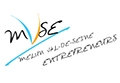 Logo MVSE