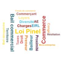 Loi Pinel Du Nouveau Pour Les Baux Commerciaux Cci Seine Et Marne