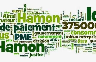 Loi Hamon, paiement, PME, gouvernement