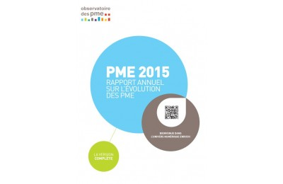 PME 2015 : rapport annuel